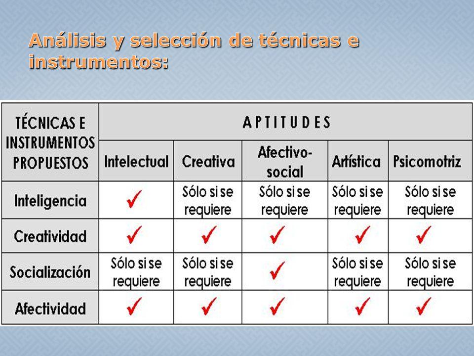 Análisis y selección de técnicas e instrumentos: