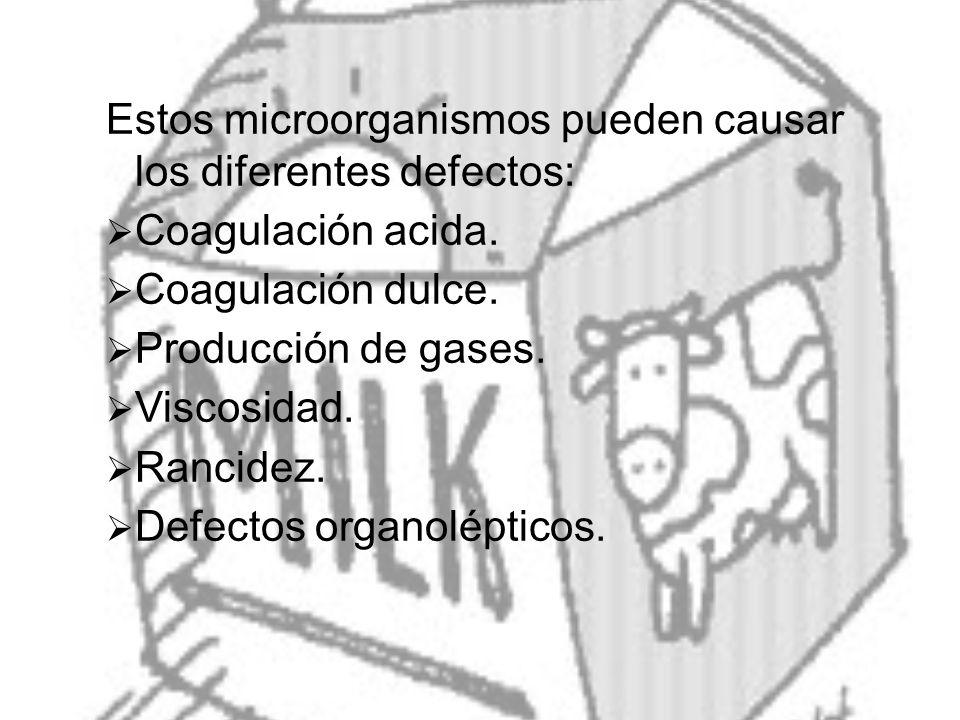 Estos microorganismos pueden causar los diferentes defectos: