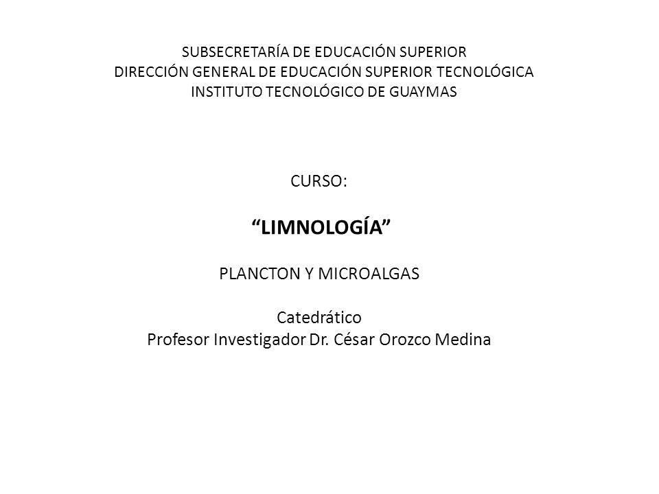 Profesor Investigador Dr. César Orozco Medina