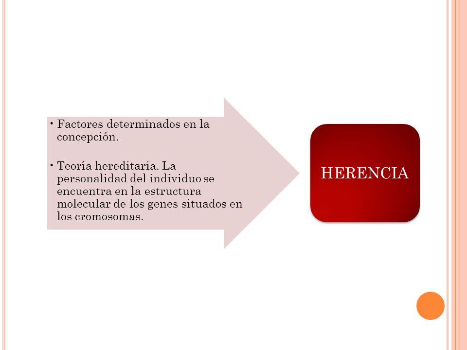 HERENCIA Factores determinados en la concepción.