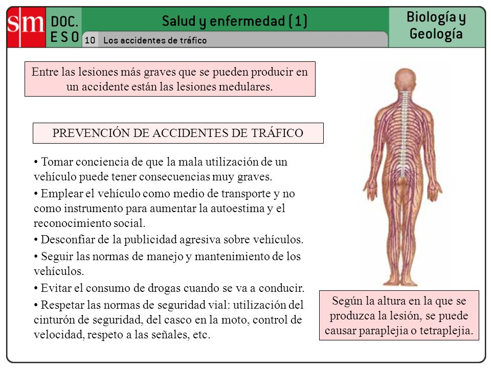 PREVENCIÓN DE ACCIDENTES DE TRÁFICO