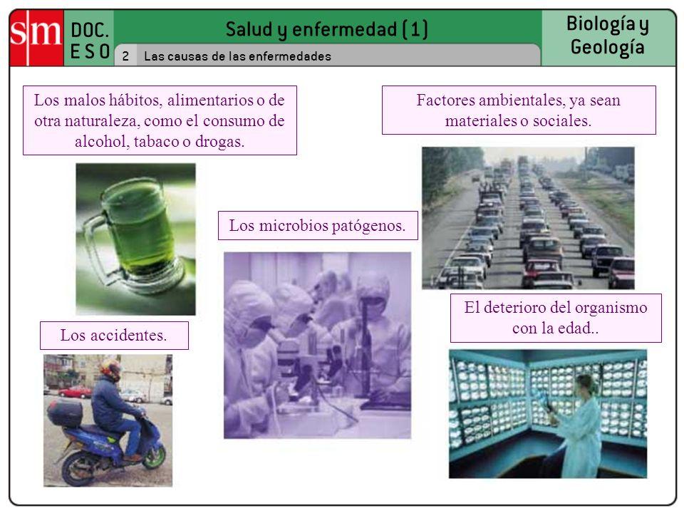 Factores ambientales, ya sean materiales o sociales.