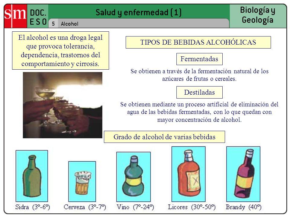 TIPOS DE BEBIDAS ALCOHÓLICAS