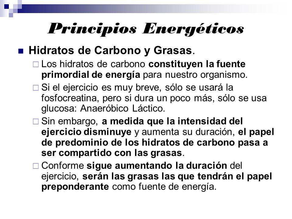 Principios Energéticos