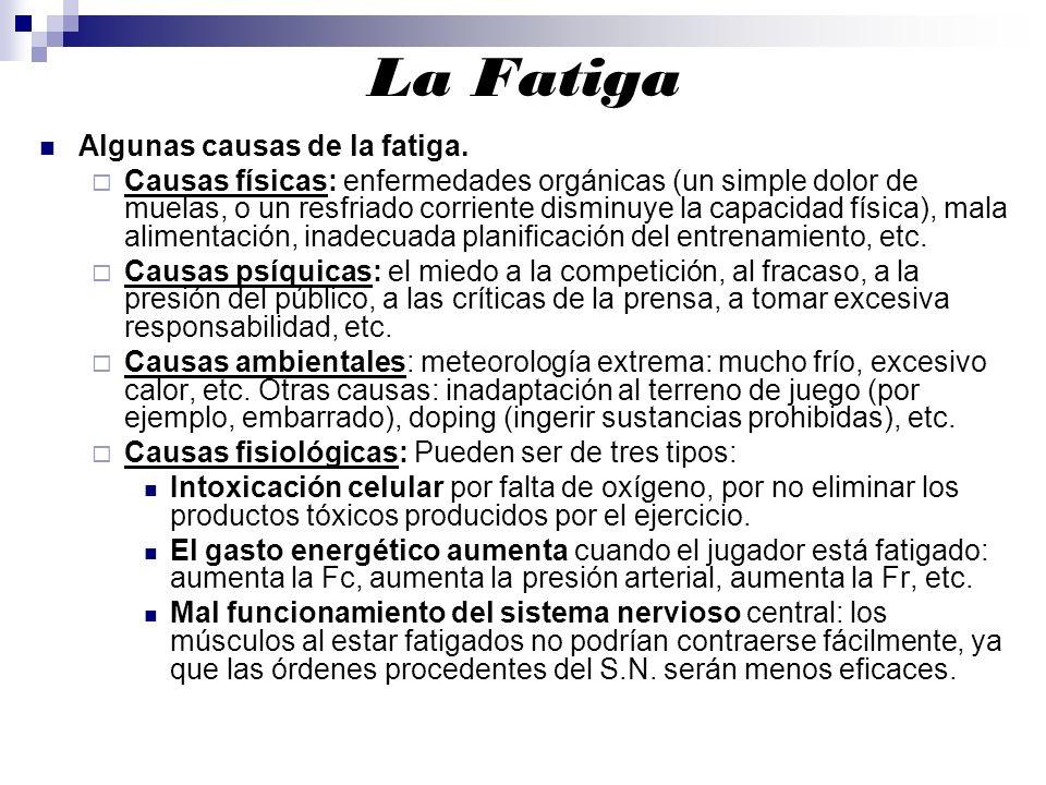 La Fatiga Algunas causas de la fatiga.