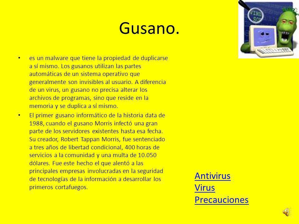 Gusano. Antivirus Virus Precauciones