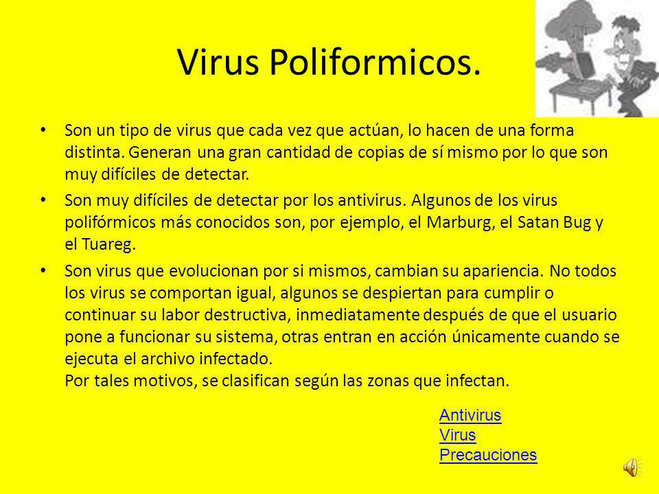 Virus Poliformicos.