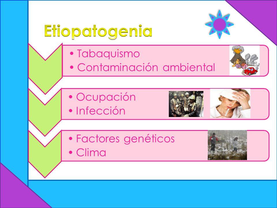 Etiopatogenia Tabaquismo Contaminación ambiental Ocupación Infección