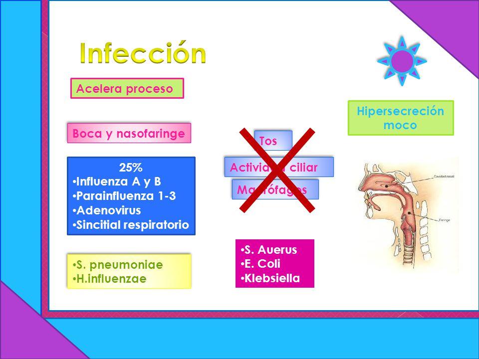 Infección Acelera proceso Hipersecreción moco Boca y nasofaringe Tos