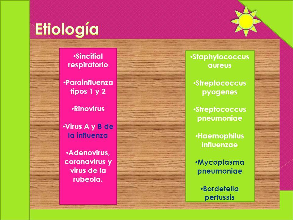 Etiología Sincitial respiratorio Staphylococcus aureus