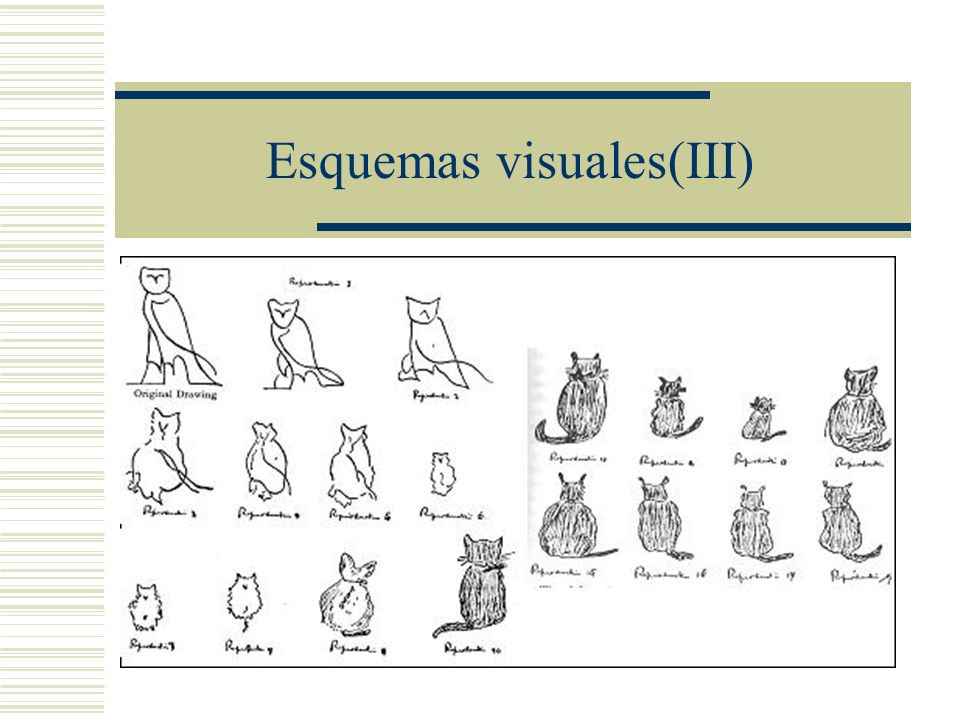 Esquemas visuales(III)