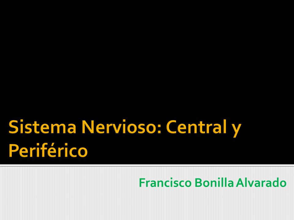 Sistema Nervioso: Central y Periférico