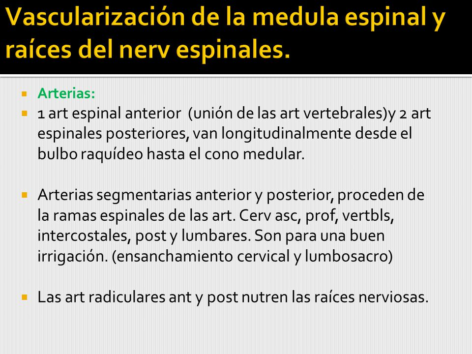 Vascularización de la medula espinal y raíces del nerv espinales.
