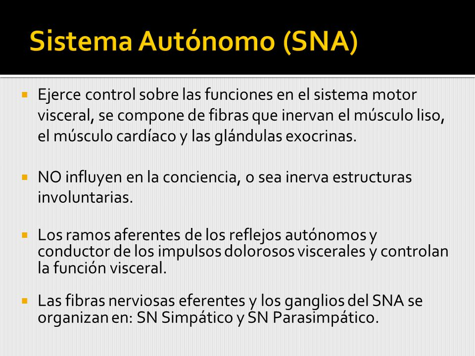 Sistema Autónomo (SNA)