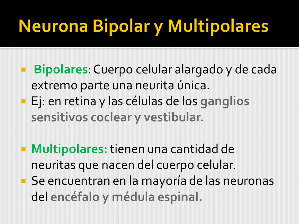Neurona Bipolar y Multipolares