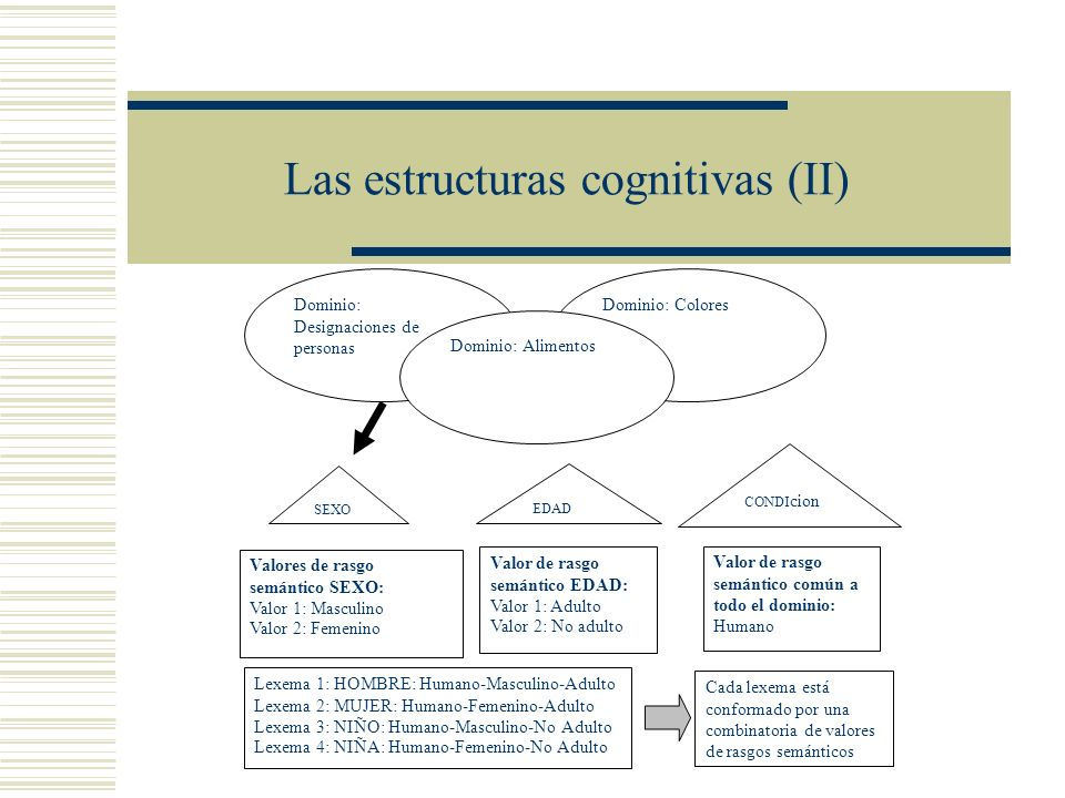 Las estructuras cognitivas (II)