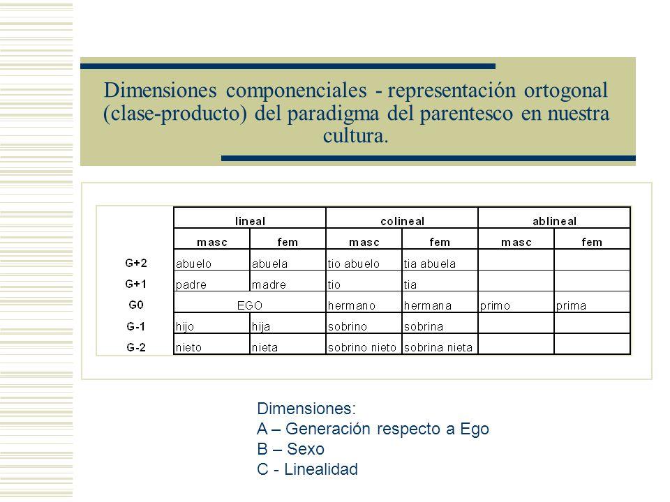 Dimensiones componenciales - representación ortogonal (clase-producto) del paradigma del parentesco en nuestra cultura.
