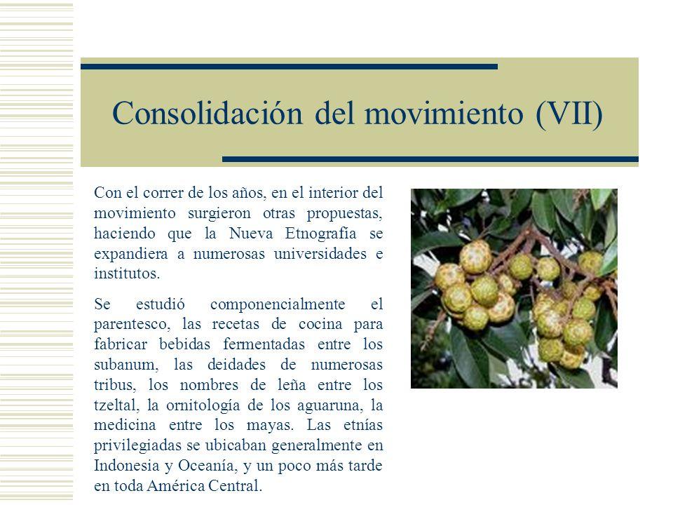 Consolidación del movimiento (VII)