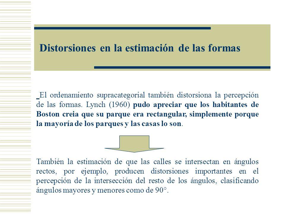 Distorsiones en la estimación de las formas