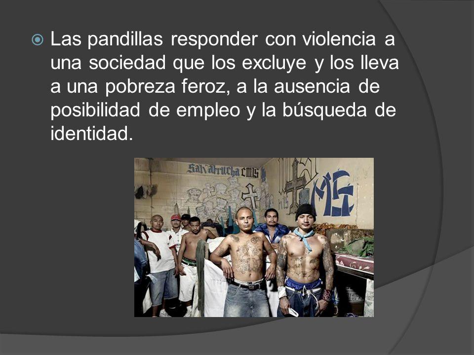 Las pandillas responder con violencia a una sociedad que los excluye y los lleva a una pobreza feroz, a la ausencia de posibilidad de empleo y la búsqueda de identidad.