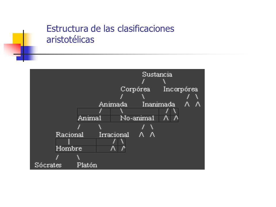 Estructura de las clasificaciones aristotélicas
