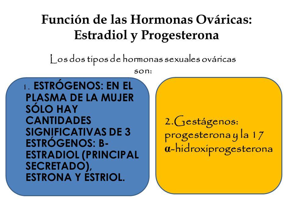 Función de las Hormonas Ováricas: Estradiol y Progesterona