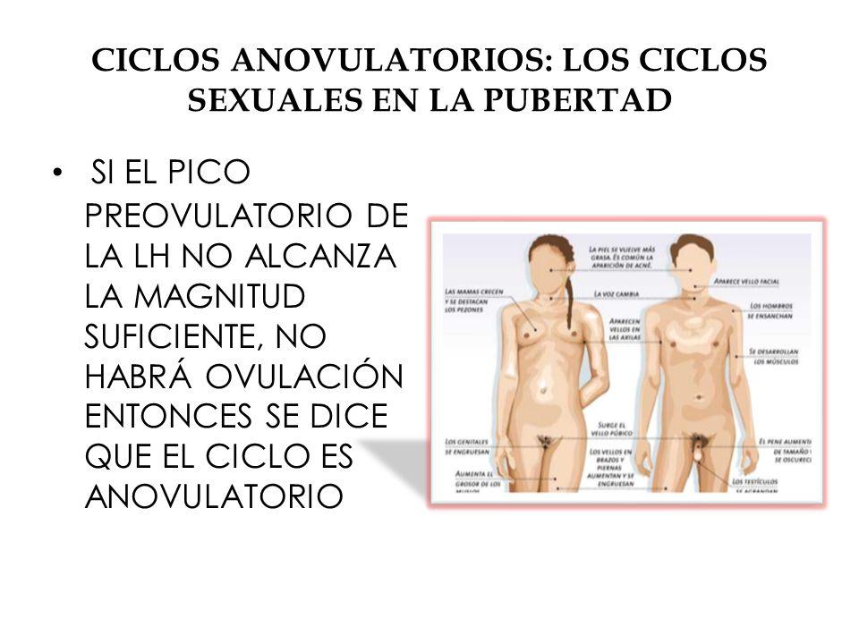 CICLOS ANOVULATORIOS: LOS CICLOS SEXUALES EN LA PUBERTAD