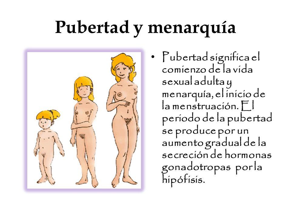Pubertad y menarquía