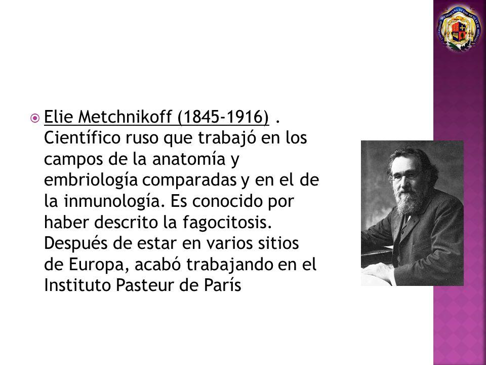 Elie Metchnikoff (1845-1916) .
