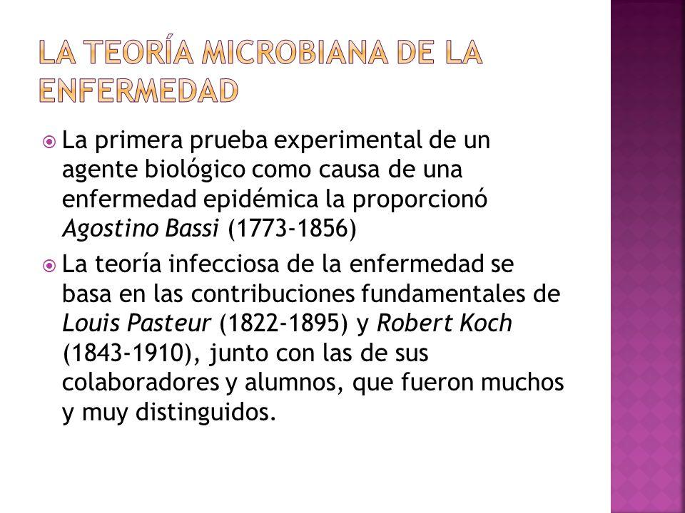 LA TEORÍA MICROBIANA DE LA ENFERMEDAD