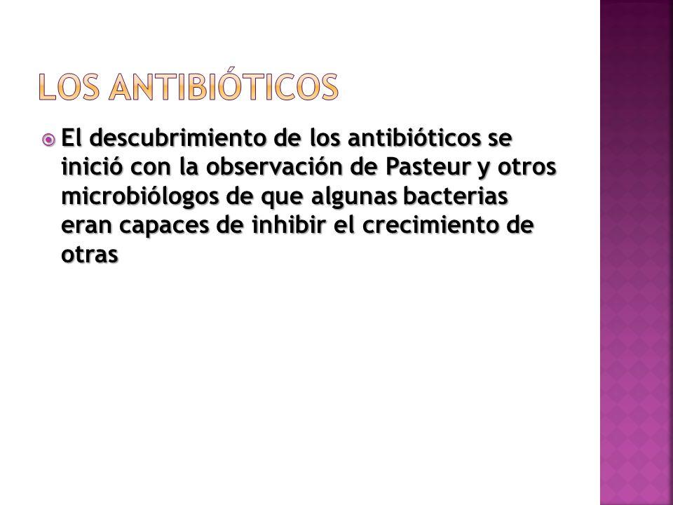 LOS ANTIBIÓTICOS