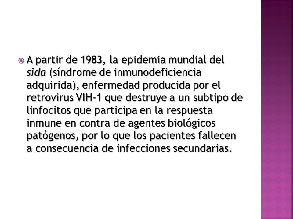 A partir de 1983, la epidemia mundial del sida (síndrome de inmunodeficiencia adquirida), enfermedad producida por el retrovirus VIH-1 que destruye a un subtipo de linfocitos que participa en la respuesta inmune en contra de agentes biológicos patógenos, por lo que los pacientes fallecen a consecuencia de infecciones secundarias.