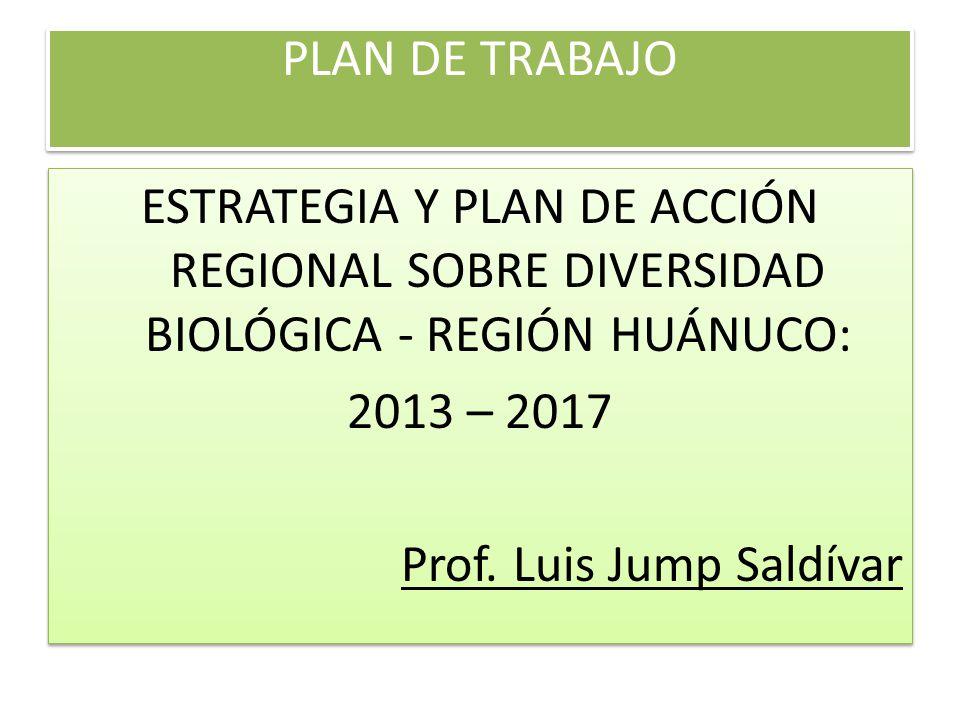 PLAN DE TRABAJO ESTRATEGIA Y PLAN DE ACCIÓN REGIONAL SOBRE DIVERSIDAD BIOLÓGICA - REGIÓN HUÁNUCO: 2013 – 2017.