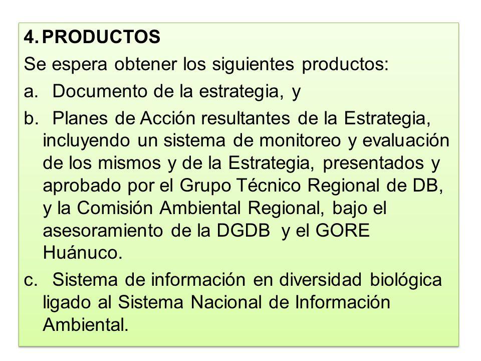 4. PRODUCTOS Se espera obtener los siguientes productos: Documento de la estrategia, y.