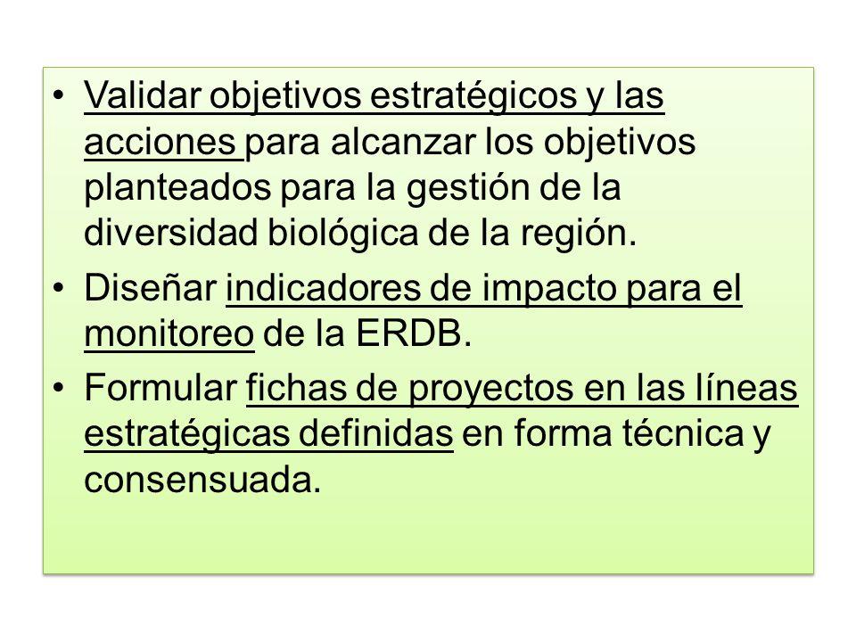Validar objetivos estratégicos y las acciones para alcanzar los objetivos planteados para la gestión de la diversidad biológica de la región.