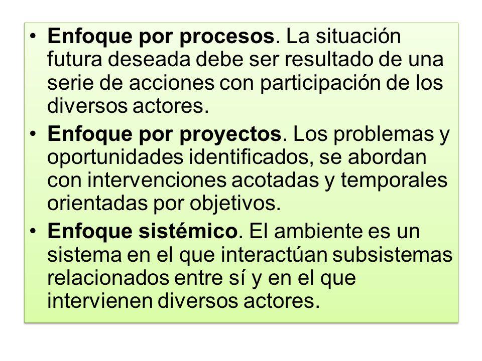 Enfoque por procesos. La situación futura deseada debe ser resultado de una serie de acciones con participación de los diversos actores.