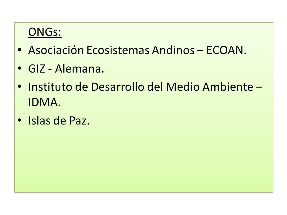 ONGs: Asociación Ecosistemas Andinos – ECOAN. GIZ - Alemana. Instituto de Desarrollo del Medio Ambiente – IDMA.