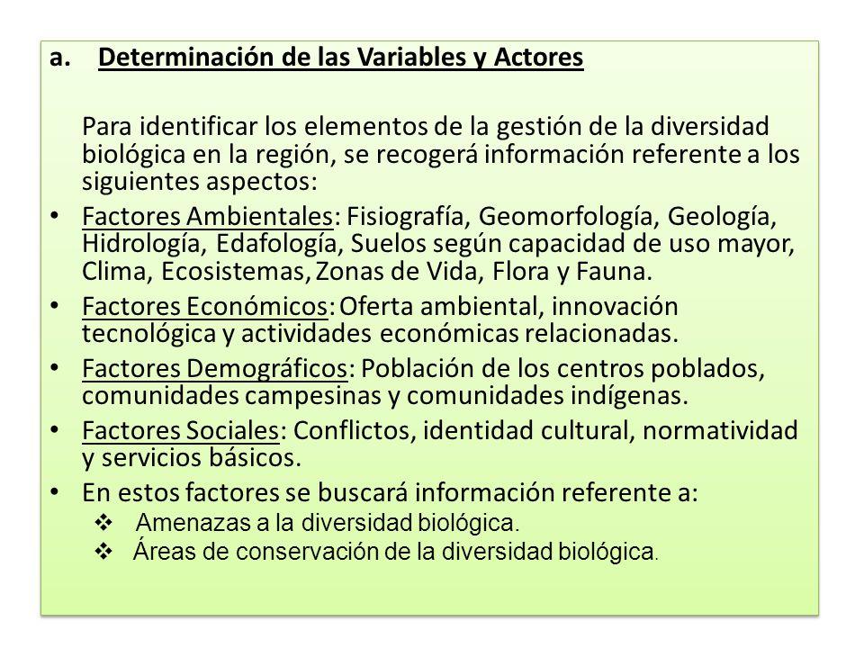 Determinación de las Variables y Actores