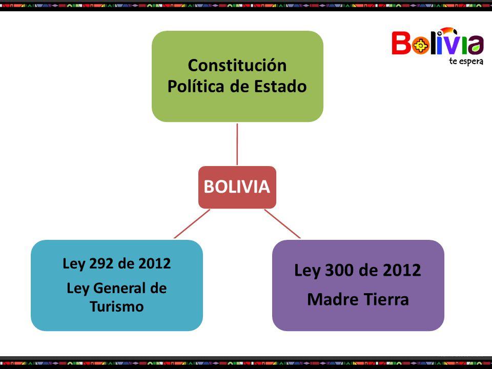 Constitución Política de Estado