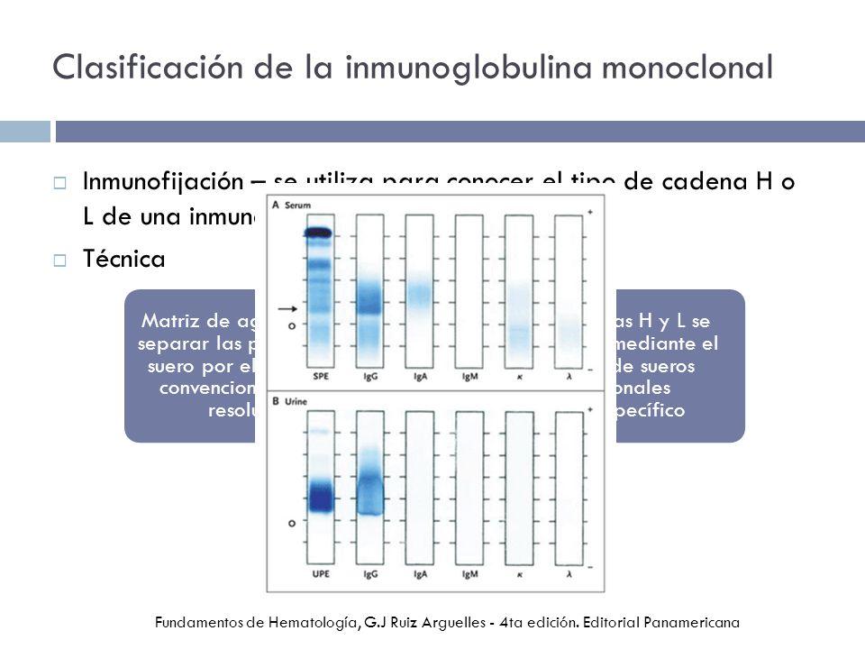Clasificación de la inmunoglobulina monoclonal