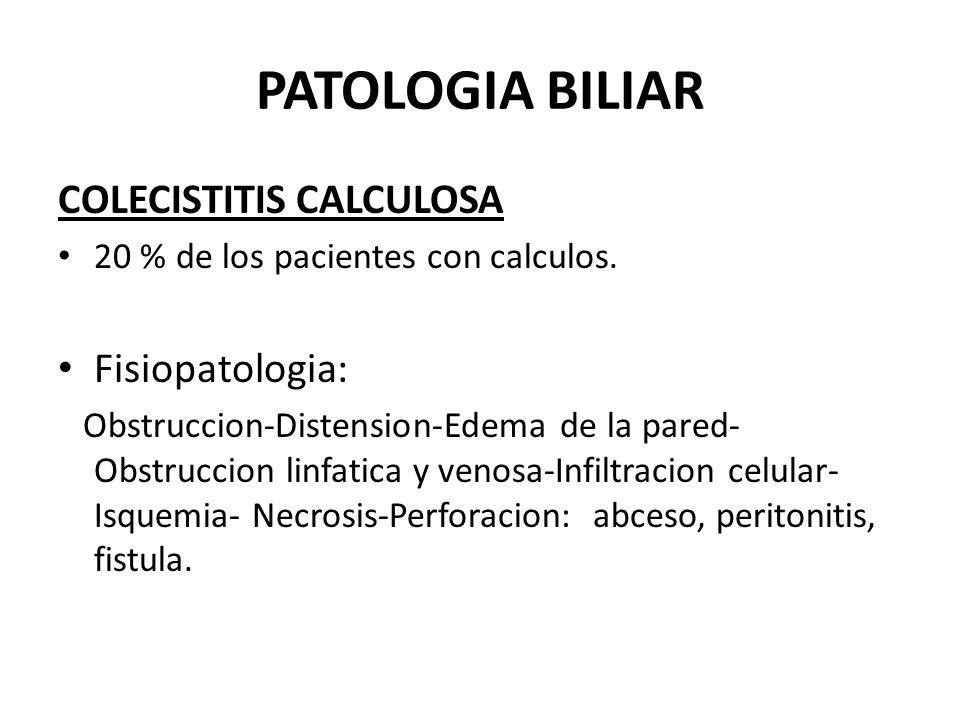 PATOLOGIA BILIAR COLECISTITIS CALCULOSA Fisiopatologia: