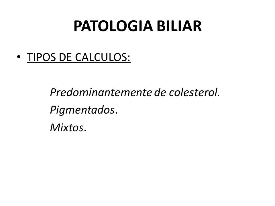 PATOLOGIA BILIAR TIPOS DE CALCULOS: Predominantemente de colesterol.