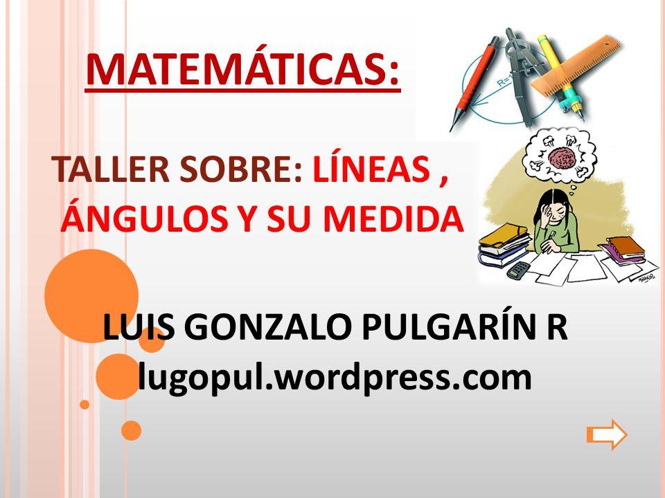 LUIS GONZALO PULGARÍN R