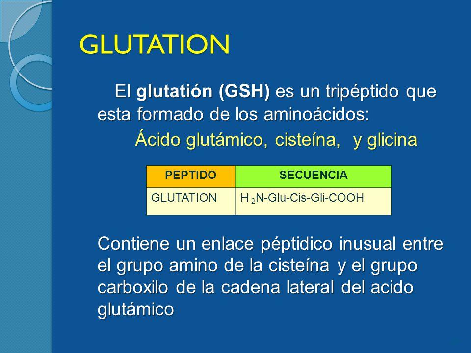 Ácido glutámico, cisteína, y glicina