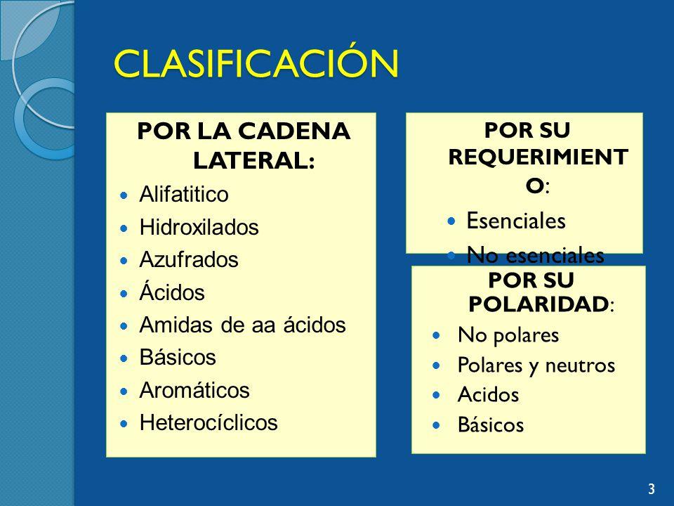 CLASIFICACIÓN POR LA CADENA LATERAL: Esenciales No esenciales