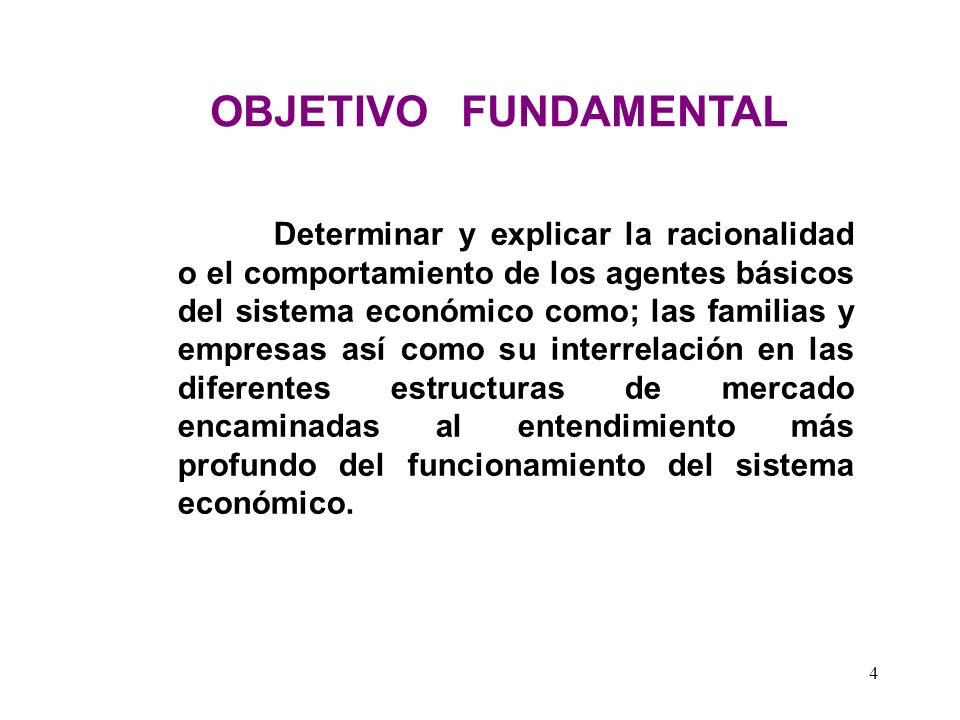 OBJETIVO FUNDAMENTAL