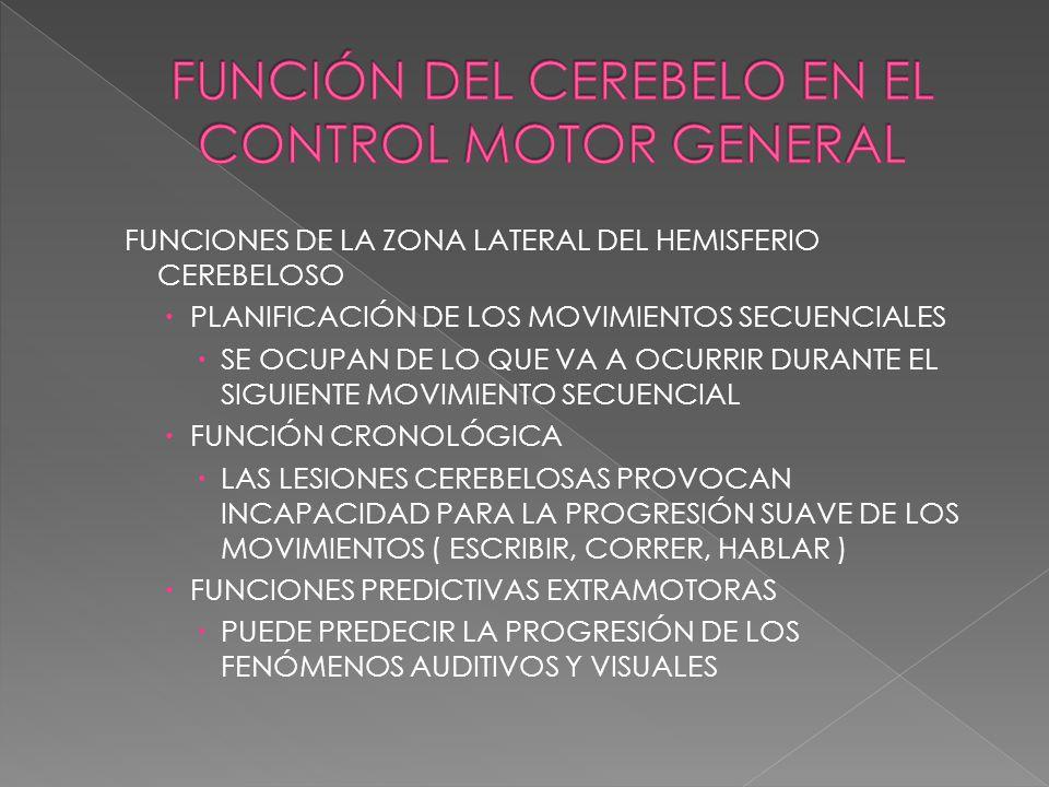 FUNCIÓN DEL CEREBELO EN EL CONTROL MOTOR GENERAL