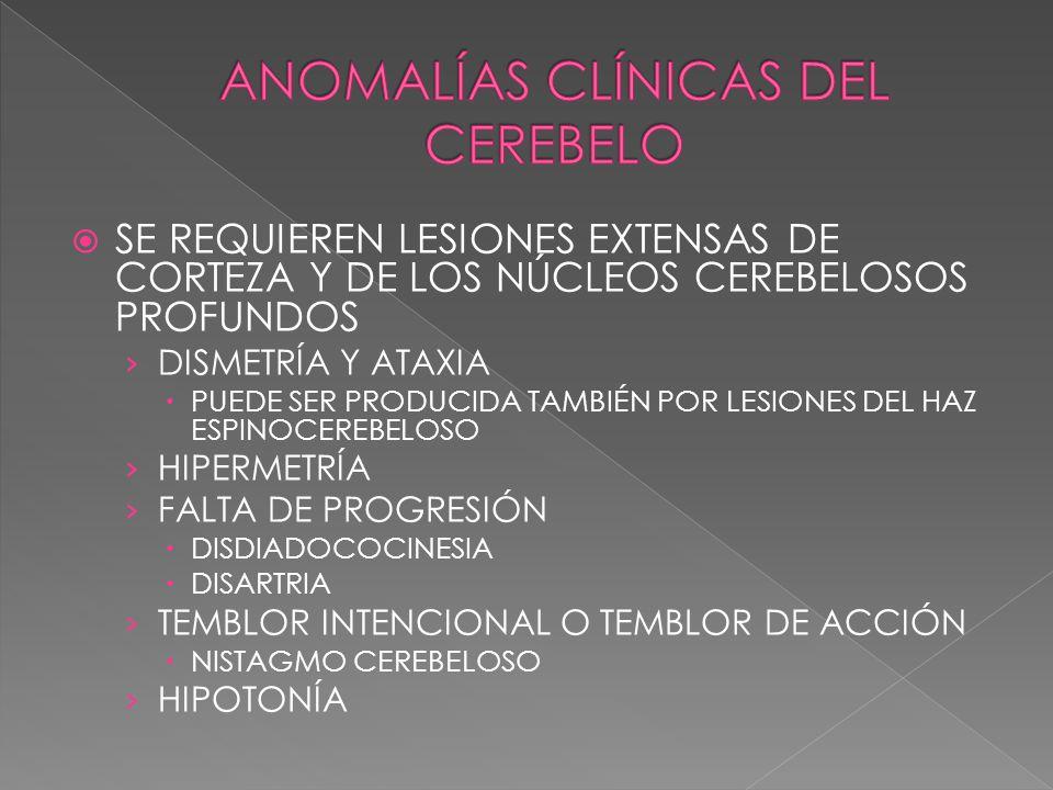 ANOMALÍAS CLÍNICAS DEL CEREBELO