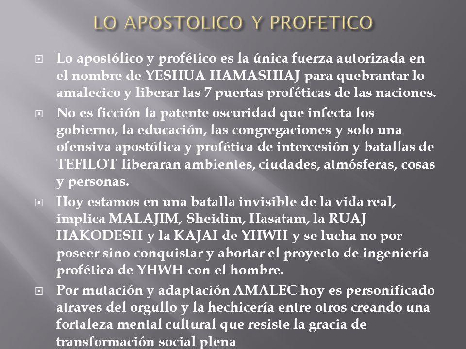 LO APOSTOLICO Y PROFETICO
