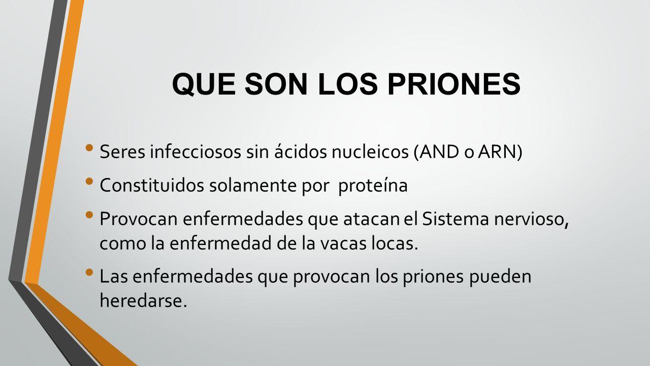 QUE SON LOS PRIONES Seres infecciosos sin ácidos nucleicos (AND o ARN)